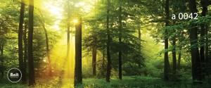 عکس جنگل رادیاتور شیشه ای