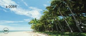 عکس ساحل رادیاتور طرح دار