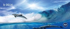 عکس دلفیت رادیاتور رنگی