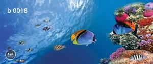 عکس ماهی رادیاتور رنگی