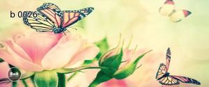 عکس پروانه رادیاتور رنگی