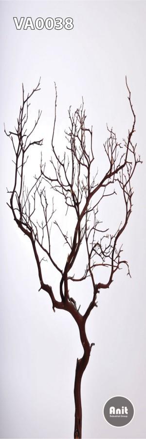 عکس تک درخت رادیاتور شیشه ای