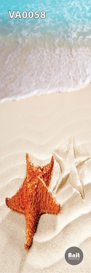عکس ستاره دریایی رادیاتور شیشه ای