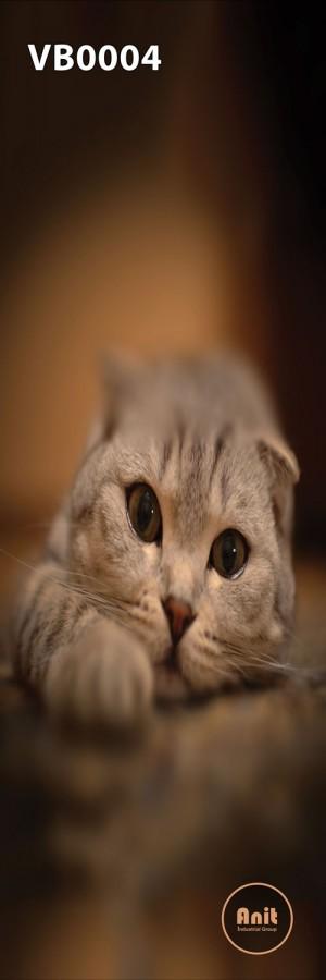 عکس گربه کوچک رادیاتور شیشه ای