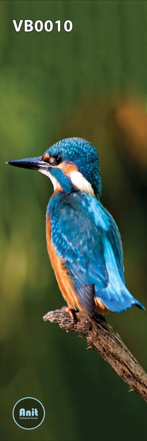 عکس پرنده آبی رادیاتور شیشه ای