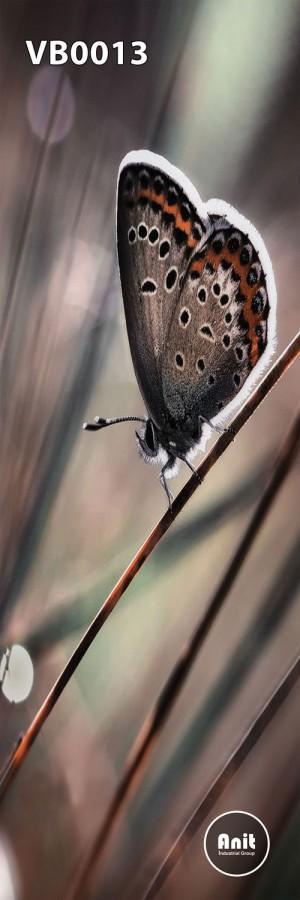 عکس پروانه رادیاتور شیشه ای