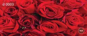 طرح شیشه رادیاتور گل رز قرمز